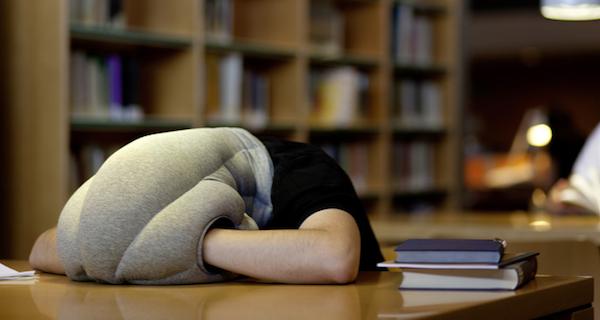 kickstarter-ostrich-pillow