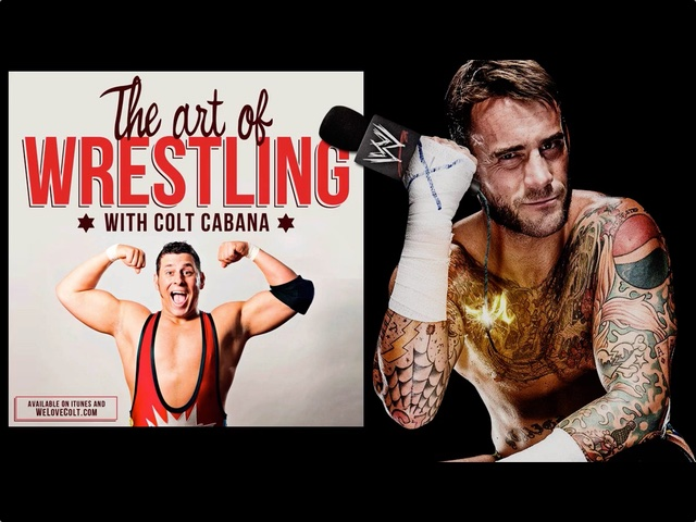 Art Of Wrestling CM Punk